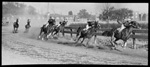Historic photo from 1910 - Horses running the Hillcrest racetrack at Davenport Road and Bathurst Street in Wychwood Park